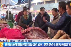 迪庆非洲猪瘟防控取得阶段性成效 疫区疫点生猪已全部处置