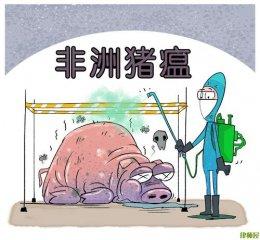 非洲猪瘟病毒的活性与灭活