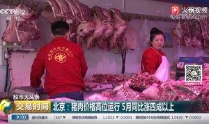 北京:猪肉价格高位运行,5月同比涨四成以上