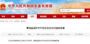青海省海东市平安区发生非洲猪瘟疫情