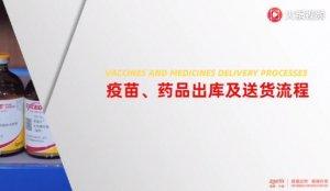 疫苗药品出库及送货流程
