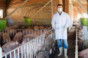 安徽233家屠宰企业全部派驻兽医 共计860人