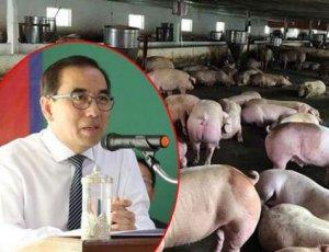 柬埔寨农林渔业部大臣:采取措施应对非洲猪瘟疫情