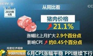 猪肉同比涨幅高达48%!养户补栏谨慎,猪价破十也不舍得卖!
