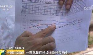 中国经济半年报:非洲猪瘟和周期性因素叠加 上半年猪价连续上涨