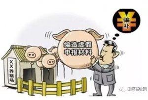 愤怒!生猪补贴拉下一个市31名官员,涉案金额超7000万