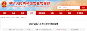 湖北省团风县发生非洲猪瘟疫情