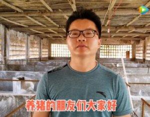 母猪产后消炎、清宫药水配方,养猪人收藏