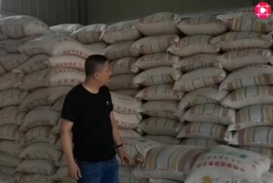养殖行业严重受创,原料豆粕会有什么影响,看原料商怎么说