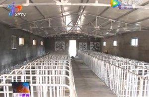新平县召开40万头生猪养殖工作会