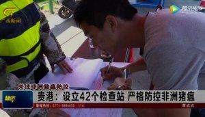 贵港:设立42个检查站 严格防控非洲猪瘟
