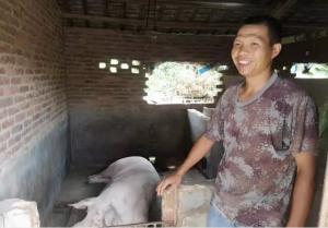 羊和村鼓励贫困户发展种养,养猪脱贫!
